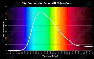 #11 Yellow-Green