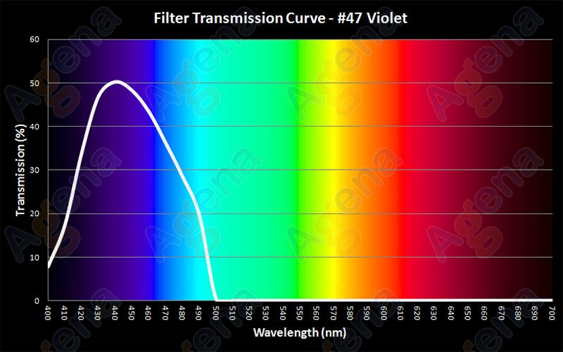violet youre trans enough